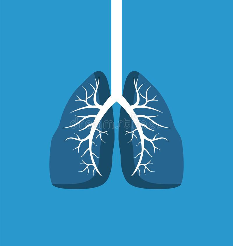Lungs Image Banner Isolated on Blue Background. Vector illustration of human organ with white windpipe, organism s part, colorful biologic poster stock illustration