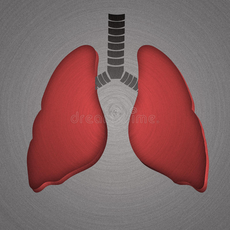 Lungs, stamped into polished metal. Medical concept royalty free stock photo