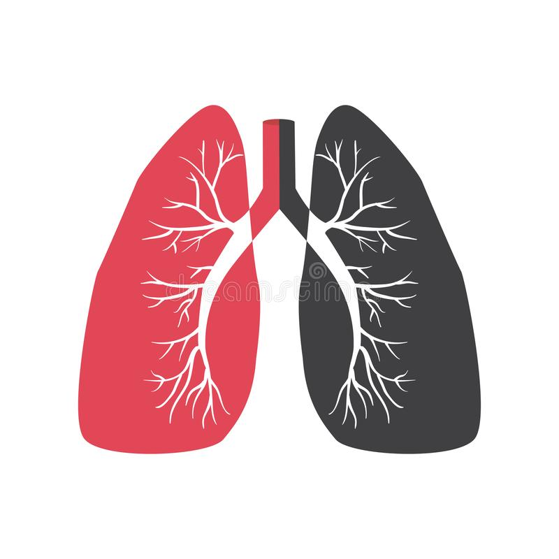 Lungs vector icon stock illustration