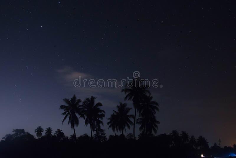 Luogo natio ancora coperto dagli alberi e dalle risaie fotografia stock libera da diritti