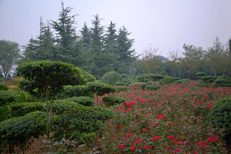 Luopu Park, Luoyang royalty free stock photos