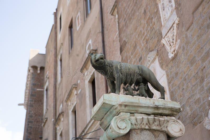 Lupa Capitolina zdjęcie royalty free