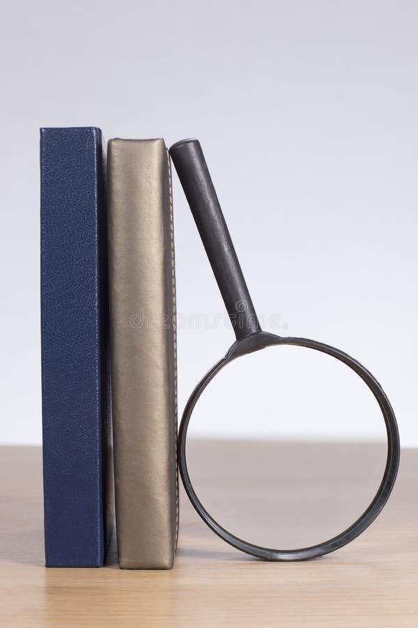 Lupe, die an den Büchern sich lehnt lizenzfreie stockfotos