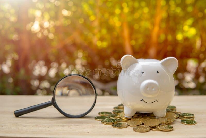 Lupe nahe bei weißem Sparschwein und Münzengeld auf hölzerner Tabelle im Parksonnenunterganghintergrund stockbild