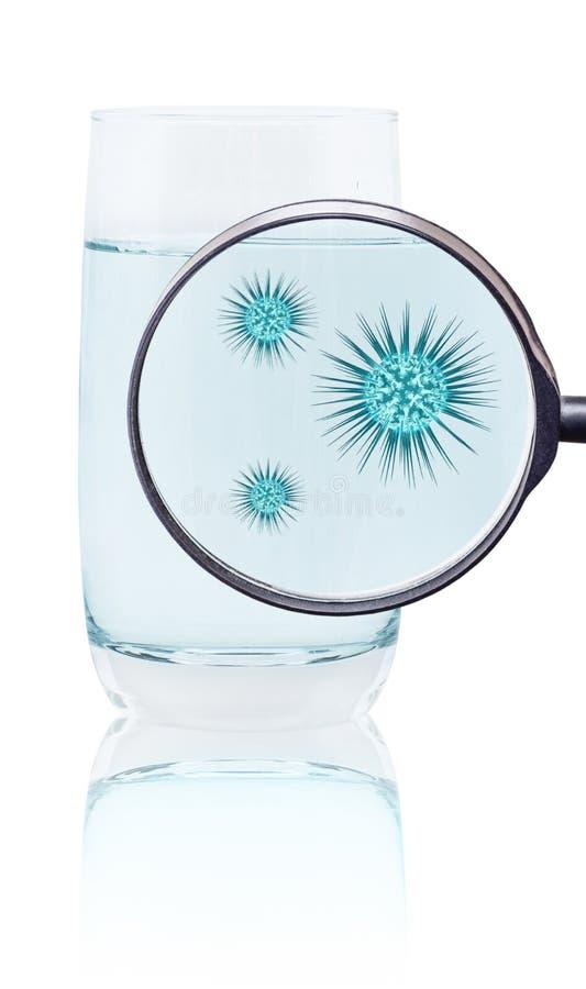 Lupe zeigt Mikroben im Glas Wasser stockbilder