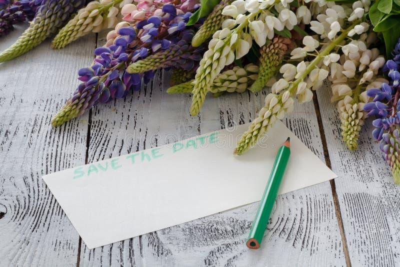 Lupine сирени, бумажная белизна, показатели предпосылки стоковое фото