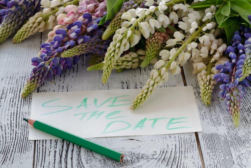 Lupine сирени, бумажная белизна, показатели предпосылки стоковое фото rf