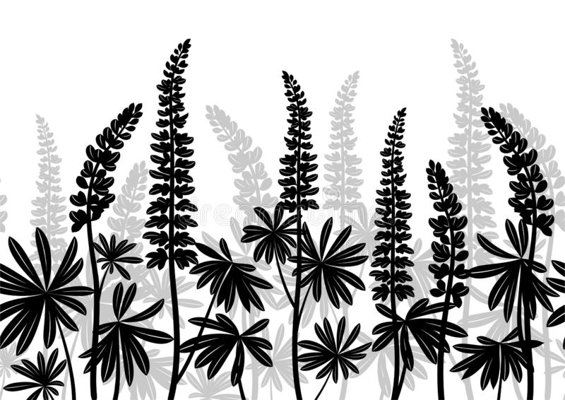 Lupine Plants, Seamless stock illustration