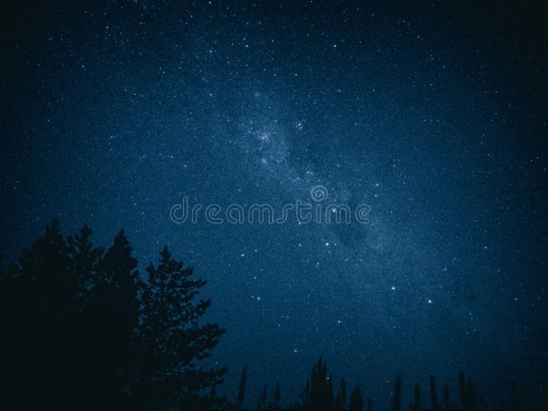 Lupins witnessing the southern hemisphere. Milky way and southern cross. The Aoraki National Park is home to a 4,300 sq km chunk of land that was designated as royalty free stock photos