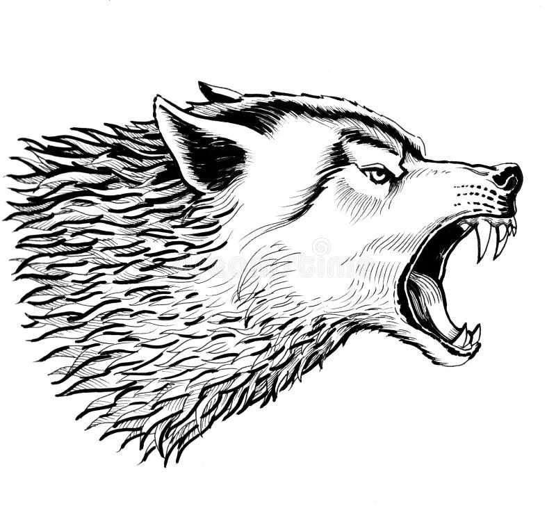 Lupo arrabbiato royalty illustrazione gratis