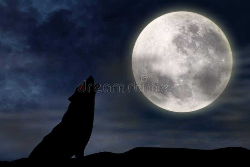 Lupo che urla alla luna piena illustrazione di stock