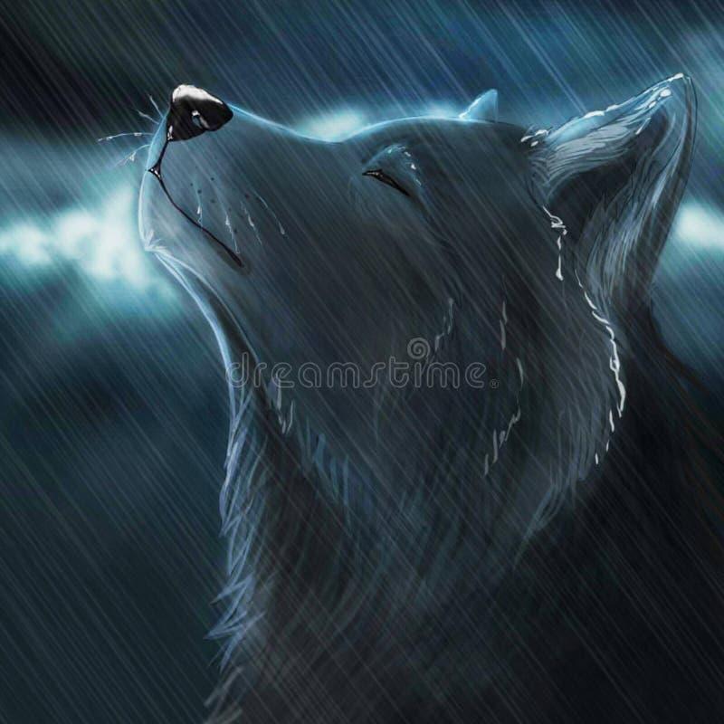Lupo e pioggia di notte illustrazione di stock