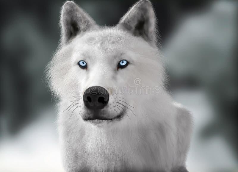 Lupo selvaggio bianco con gli occhi azzurri con il fondo vago di inverno di profondità di campo illustrazione di stock