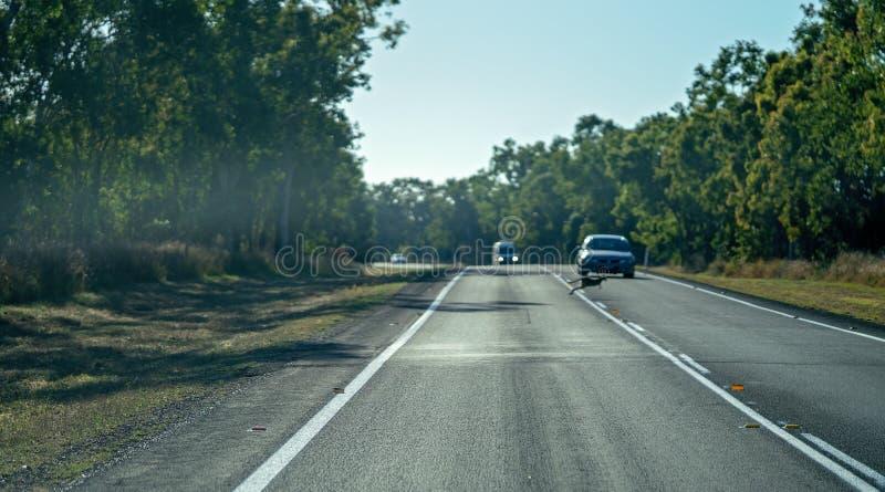 Lupulización australiana del ualabi a través de la carretera en Front Of Car imagen de archivo