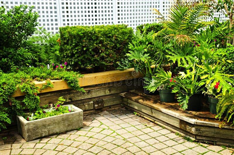 lush сада зеленый стоковые изображения