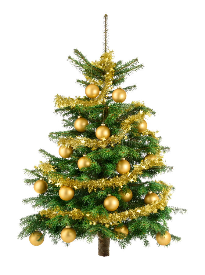 Lush christmas tree with gold baubles stock image