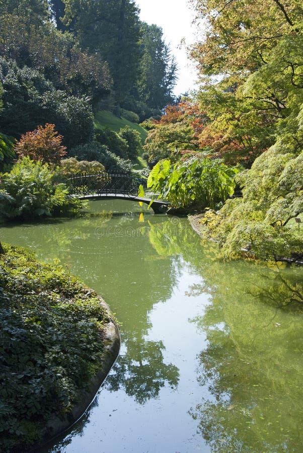 Download Lush garden stock photo. Image of autumn, environmental - 21531090