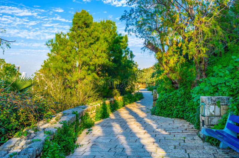 The lush garden of Jaffa. The lush HaMidron garden located on the scenic slope of old Jaffa, Tel Aviv, Israel stock photos