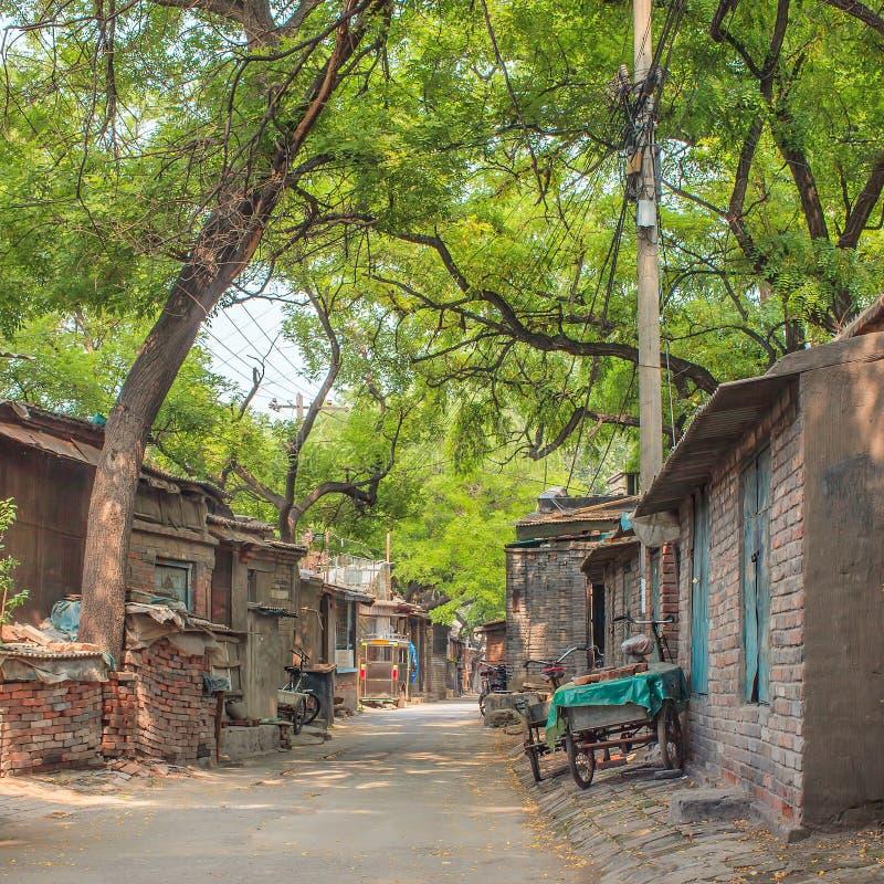 Free Lush Green Ancient Hutong, Beijing, China Royalty Free Stock Photography - 113012297