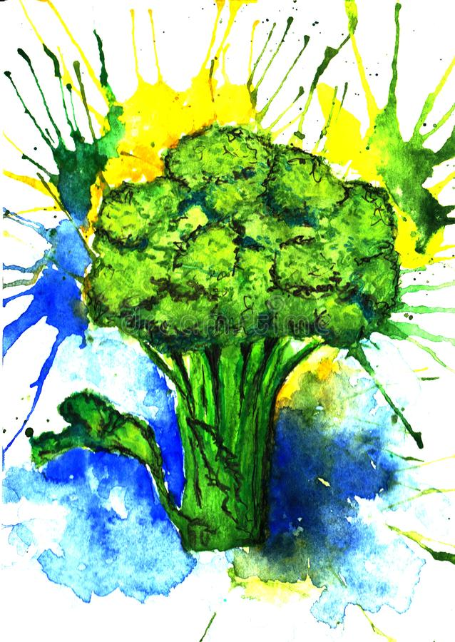 Lush green broccoli with colored spots watercolor illustration. Artistic hand drawn broccoli illustration royalty free stock photos