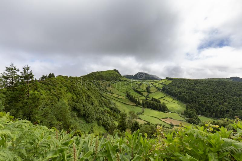 Lush green in Sete Cidades royalty free stock photography