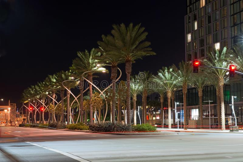 Green Palm tree downtown boulevard lit in midnight stock image