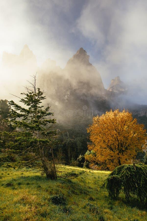 Lush green scenic valley below majestic peaks. Lush green scenic valley below majestic rugged rocky mountain peaks in the Monestir de Montserrat Region near stock photo