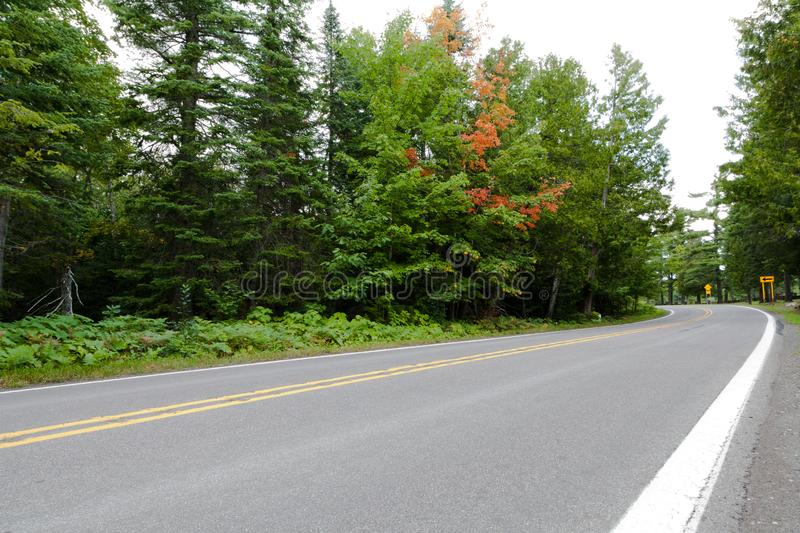 Twisty road thru Northern Michigan. Copper Harbor. Lush green vegetation and old trees are along twisty paved road in Michigan`s Upper Peninsula royalty free stock images