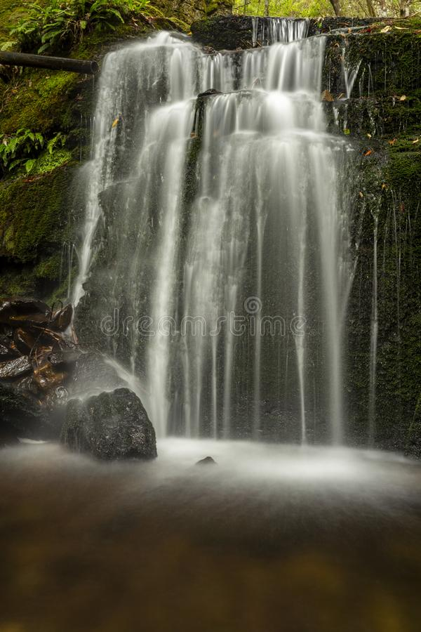 Lush green Waterfall na Tasmânia imagem de stock royalty free