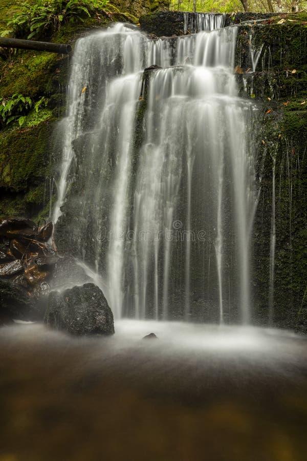 Lush green Waterfall in Tasmania. Lush waterfall deep in Tasmania rain forest royalty free stock image