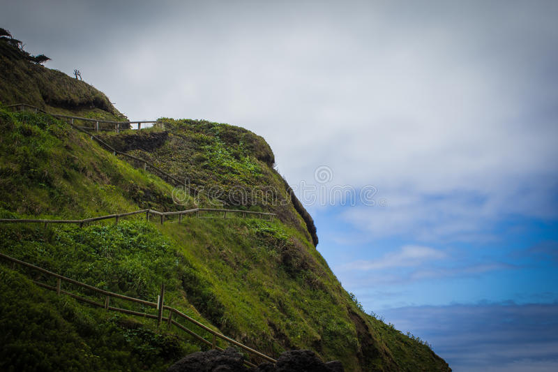 Lush hillside trail to Devil's Churn in Cape Perpetua, Oregon royalty free stock photo