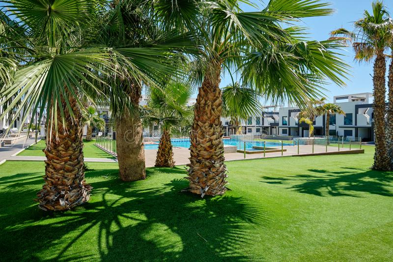 Lush palm trees inside of closed urbanization with green lawn swimming pool modern houses at sunny summer day. New property in Spain, no people. Torrevieja stock photography