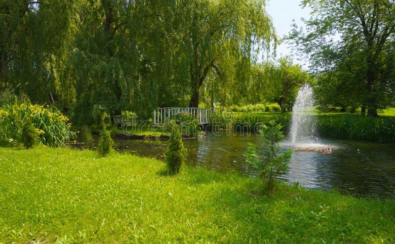 Download Summer pond. stock image. Image of rustic, destination - 30204511