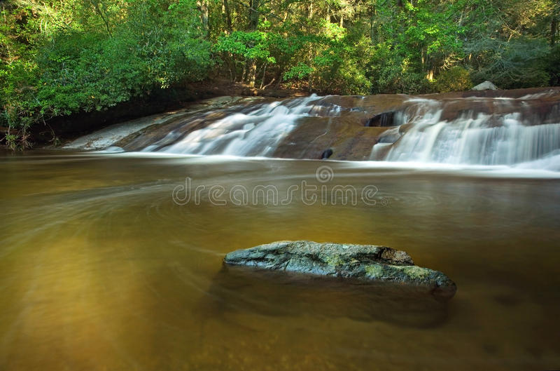 Lush Rain Forest Waterfall