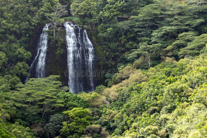 Lush tropical jungle landscape with tall waterfall on the island royalty free stock image