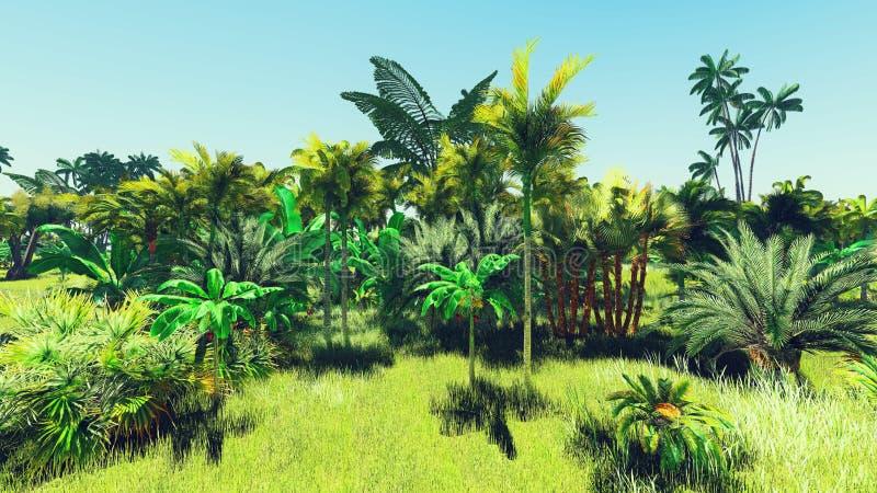 Lush vegetation in jungle royalty free stock photo