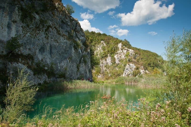 Lush vegetation at Plitvice lakes in Croatia stock photos