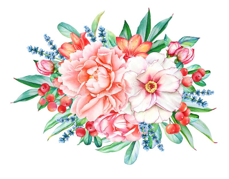 Bouquet with pink and white peonies and red berries stock image