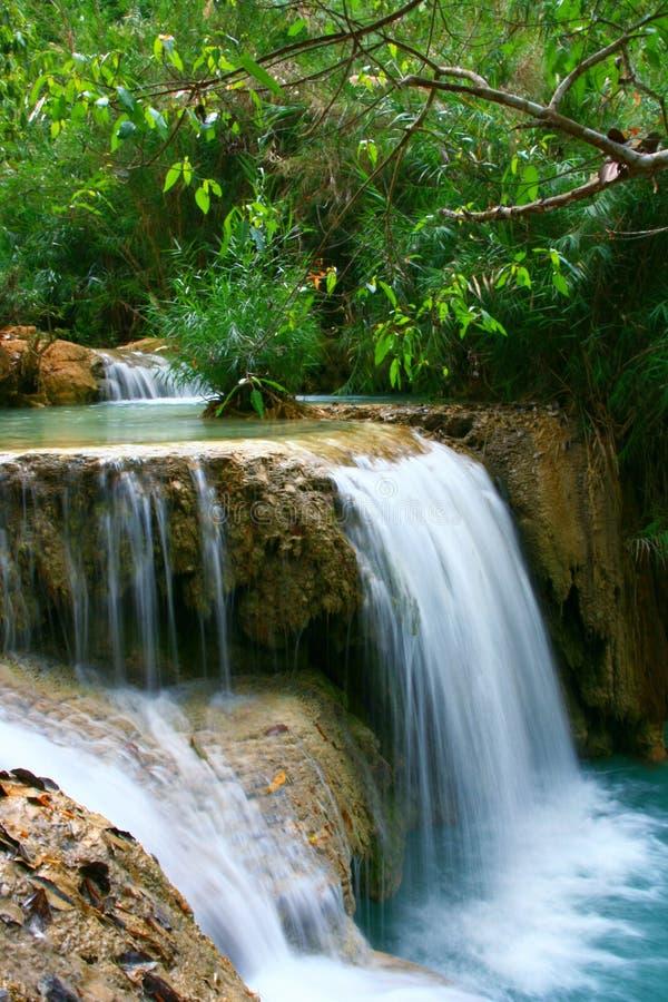 Lush Waterfall royalty free stock photos