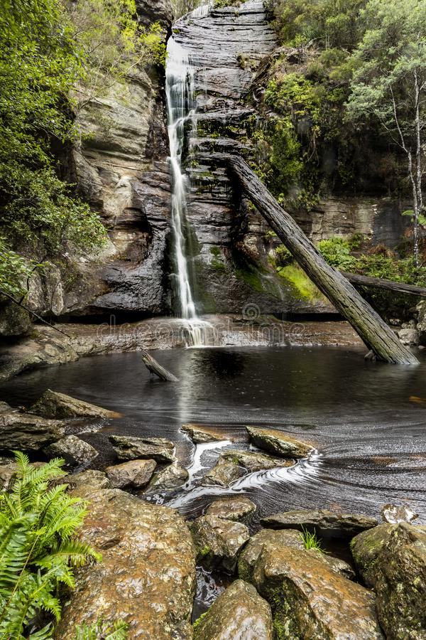 Lush green Waterfall in Tasmania. Lush waterfall deep in Tasmania rain forest stock image