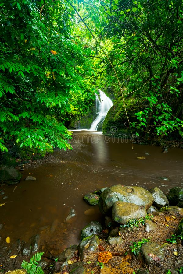 Papau Wigmore`s waterfall in the Cook Islands royalty free stock photos