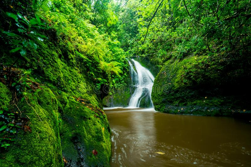 Papau Wigmore`s waterfall in the Cook Islands stock images