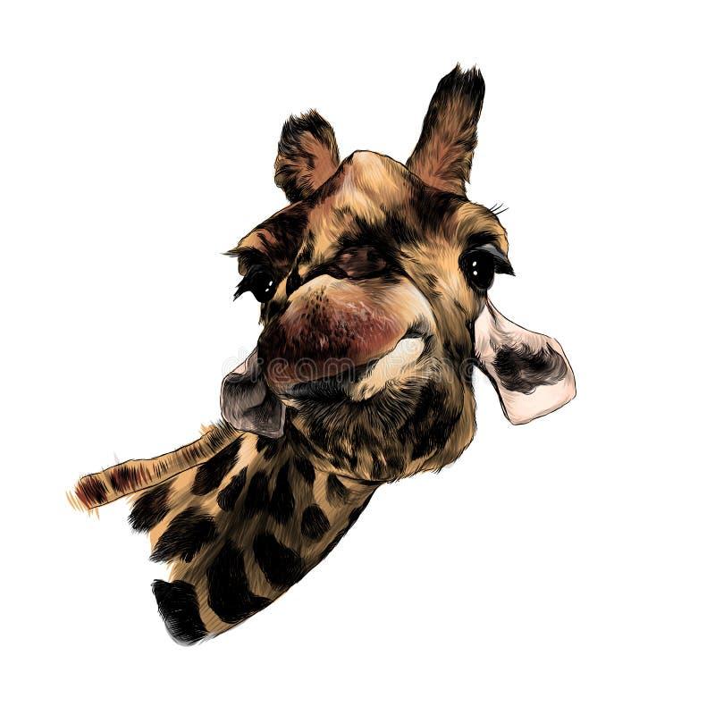 Lustige Ausdruckm?ndung des Giraffenkopfes lustig lizenzfreie abbildung