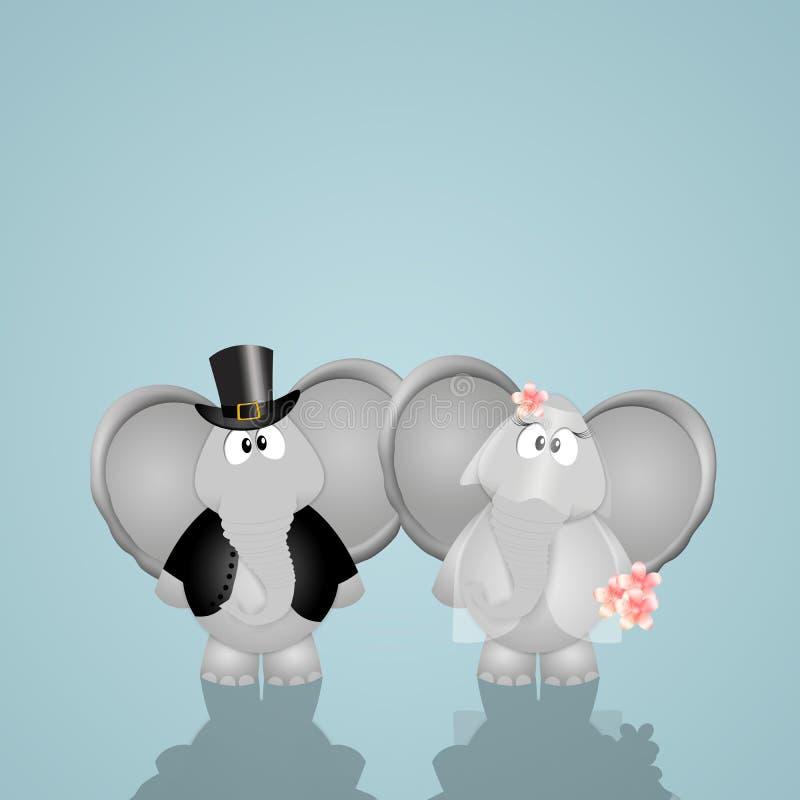 Lustige Elefanten geheiratet lizenzfreie abbildung