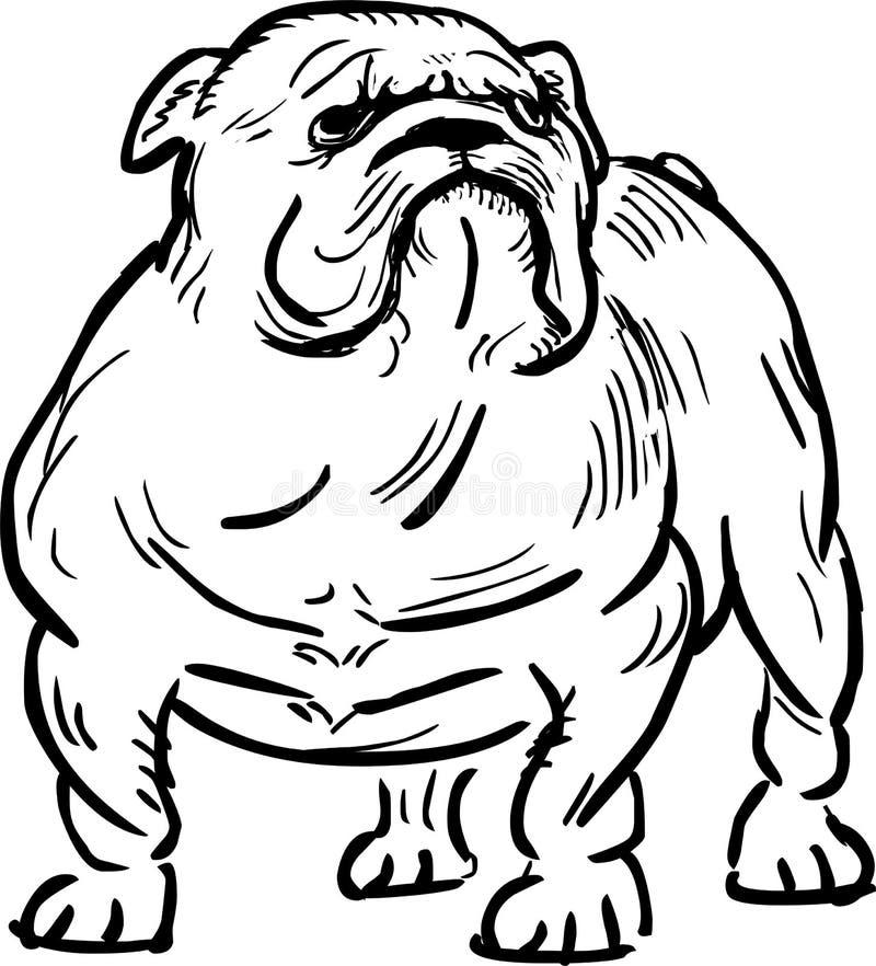 Lustige englische Bulldoggenillustration lizenzfreie abbildung