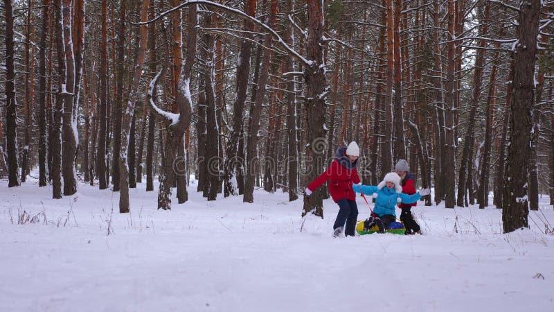 Lustige Kinder reiten ihre Mutter auf Schlitten und ein aufblasbares Schneerohr Kiefernwaldin der glücklichen Familienmutter und  lizenzfreie stockbilder