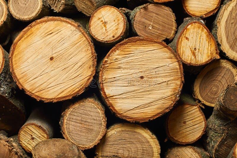 Lustige Mündung des Brennholzes stockbilder