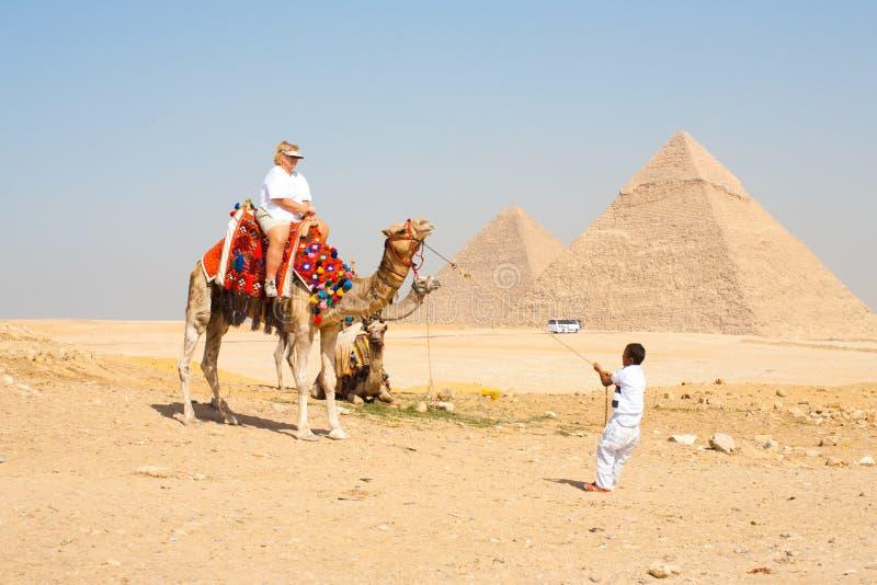 Lustiger überladener touristischer Kamel-Zug stockfoto