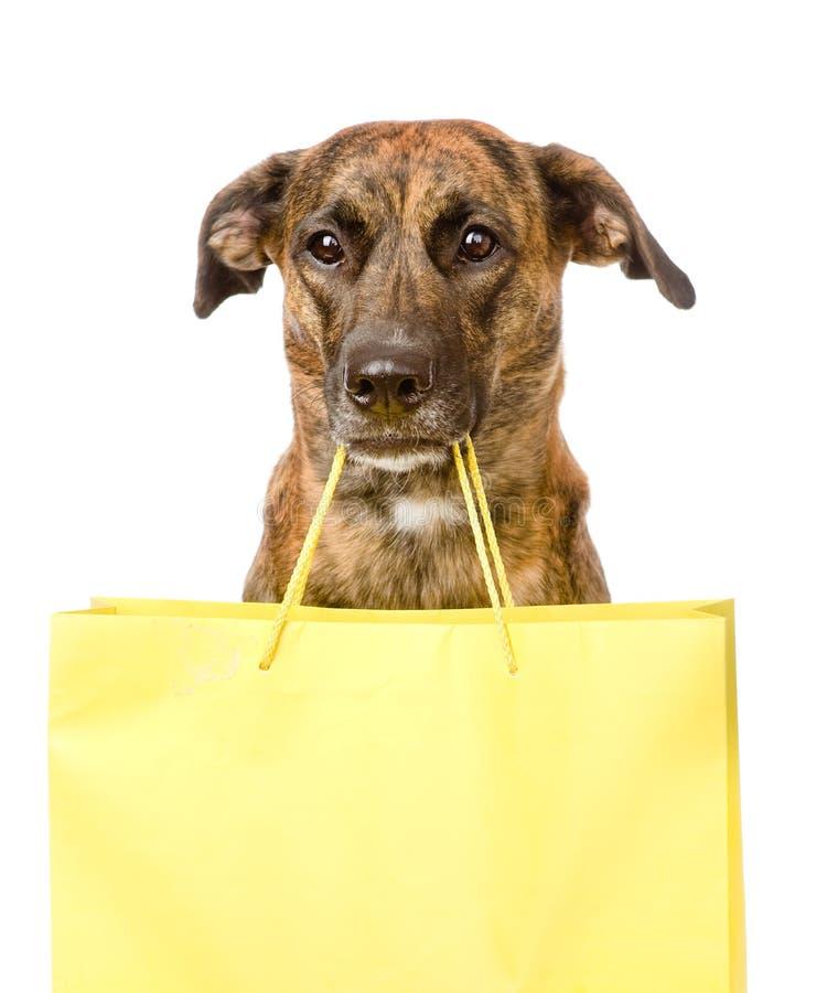 Lustiger Hund mit Einkaufstasche Getrennt auf weißem Hintergrund stockbilder