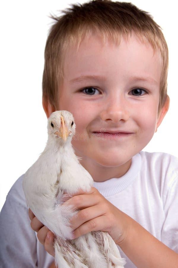 Lustiger Junge mit Huhn lizenzfreie stockfotografie